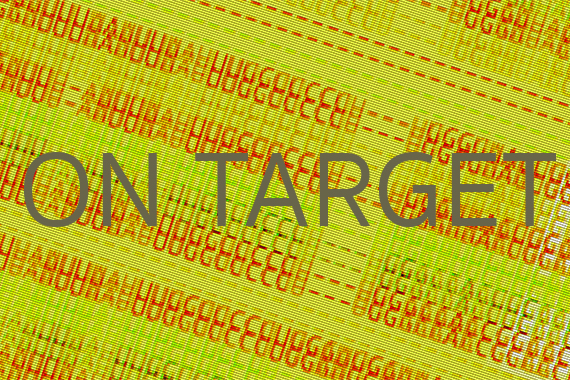 "Image of ""On Target"" text"